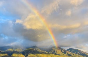 Hawaiian Rainbow Background Image