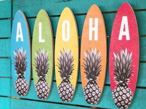 Artopia Hawaii - Product