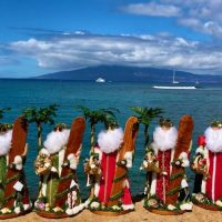 Maui Moonbeams-Product