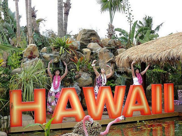 hawaii-garden